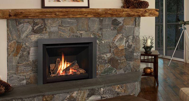 Are you looking for a gas fireplace insert teraionfo